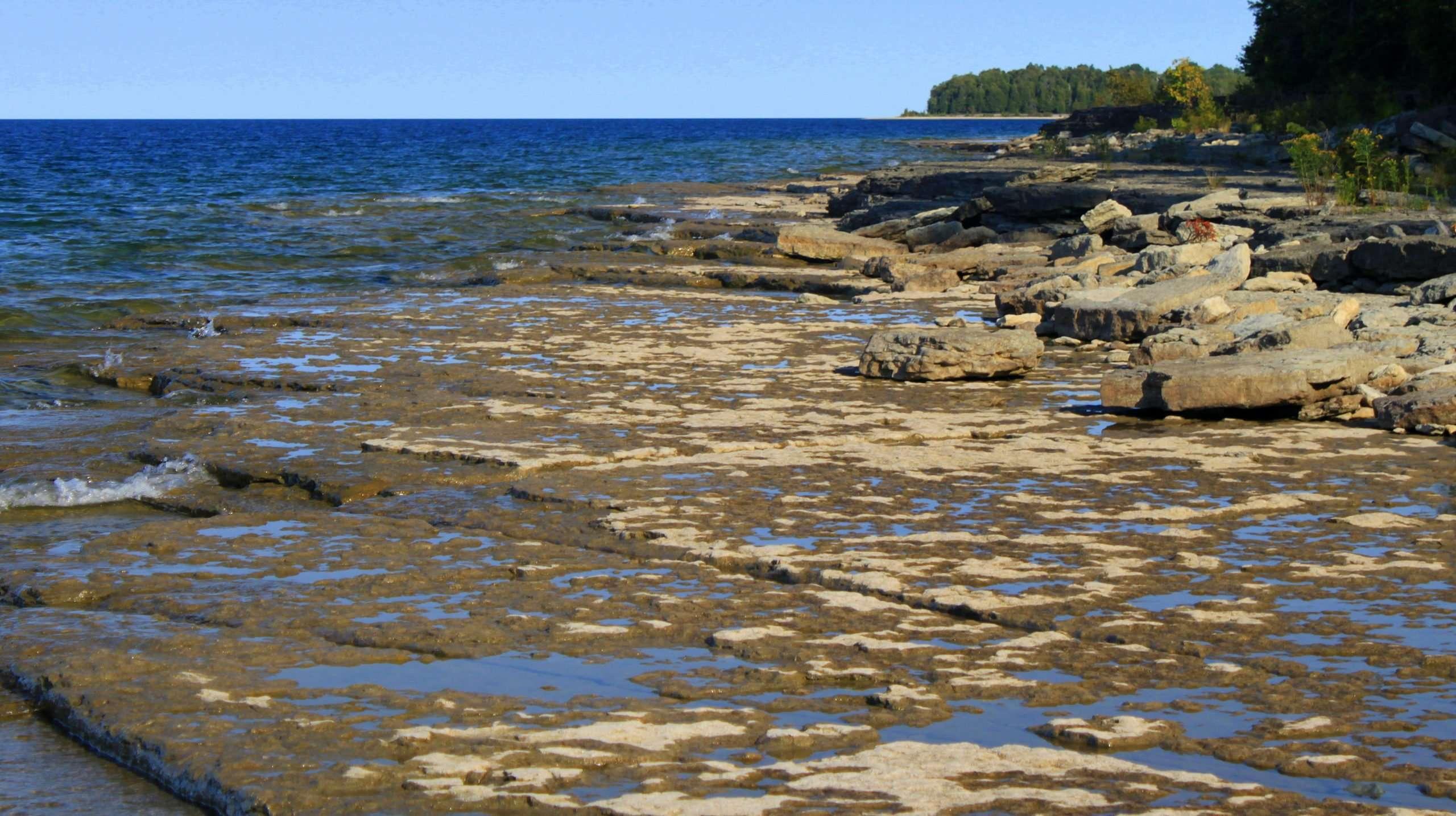 Fossil Ledges