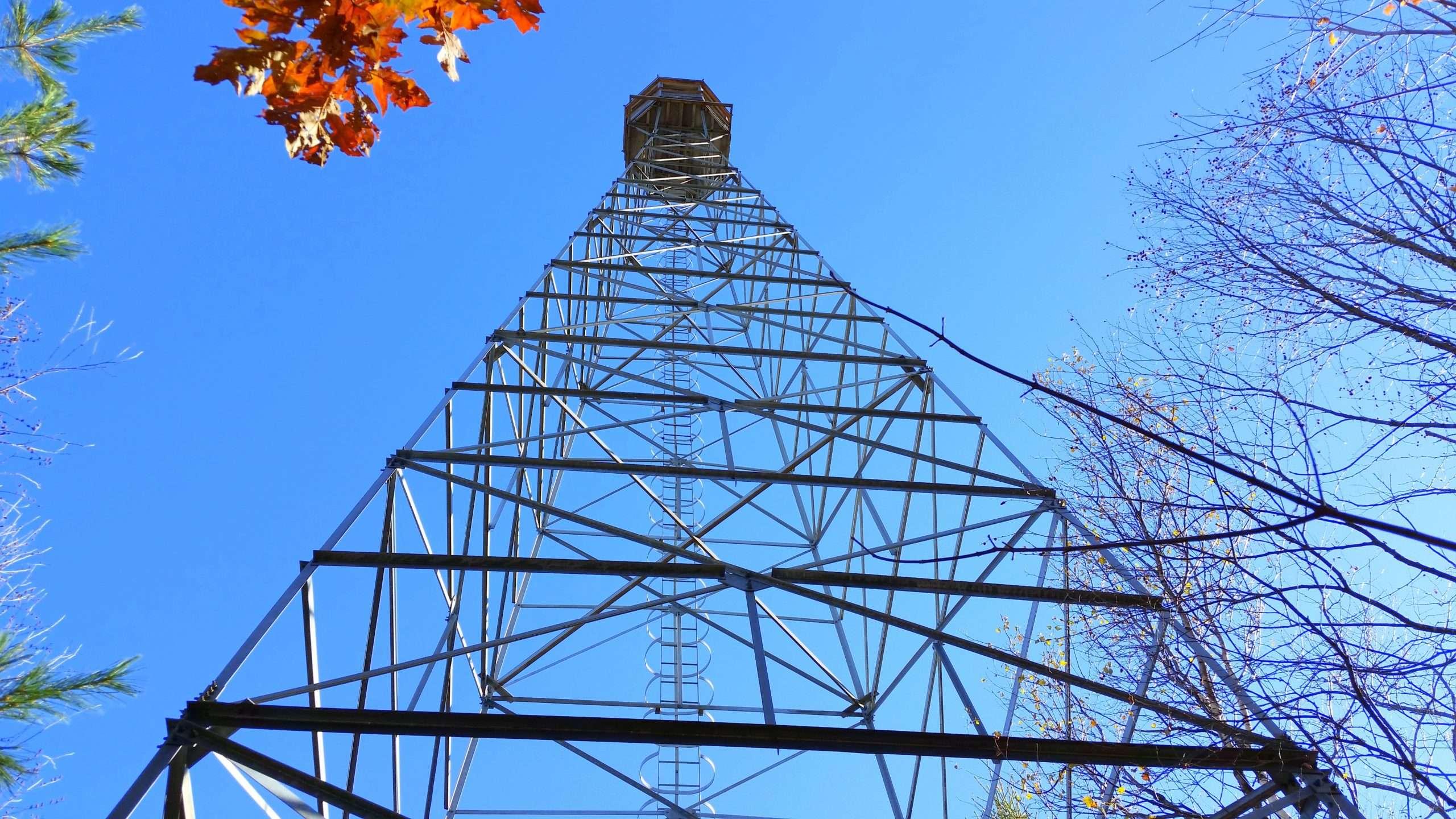 Saunders Lake Tower